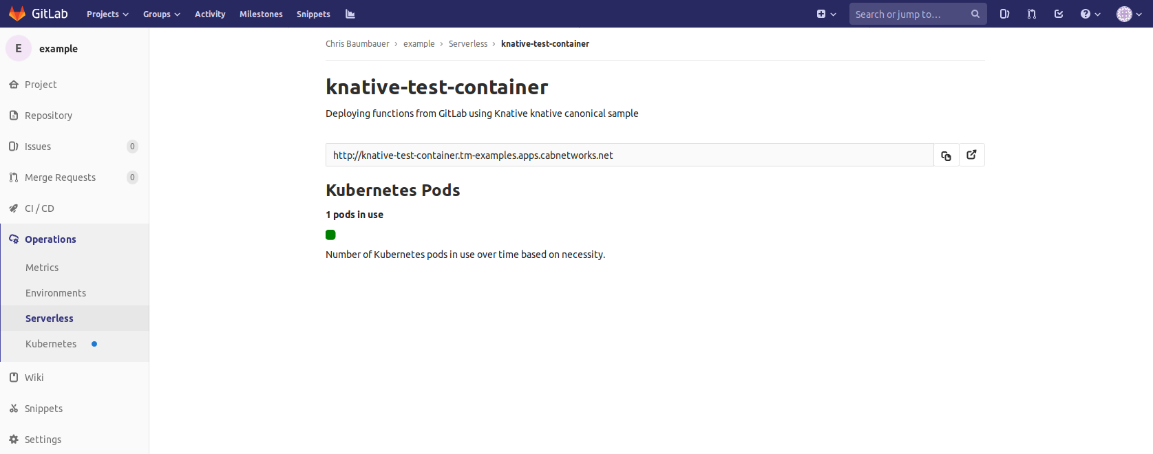 doc/user/project/clusters/serverless/img/serverless-details.png