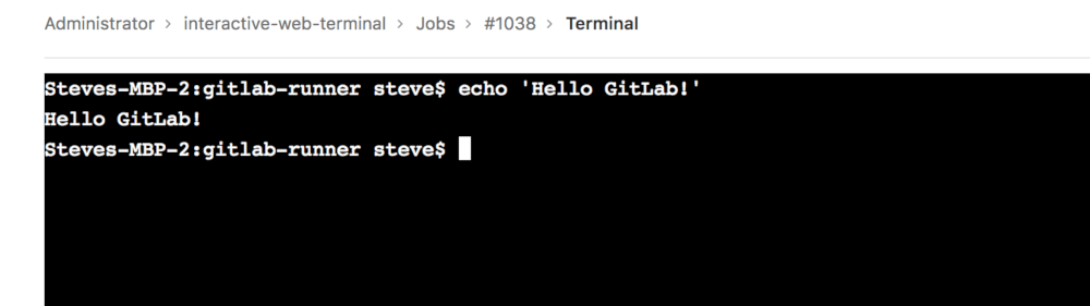 doc/ci/interactive_web_terminal/img/interactive_web_terminal_page.png